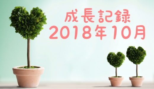 息子の成長記録2018年10月