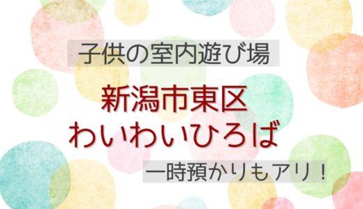 【子供の室内遊び場】新潟市東区*『わいわいひろば』で遊ぼう!【夏・冬、雨や雪の日に】