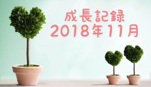 息子の成長記録2018年11月
