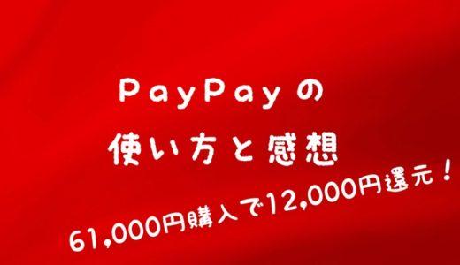 【PayPay 使い方と感想】ビックカメラで61,000円購入したら12,000円戻ってきた!【20%還元凄い】