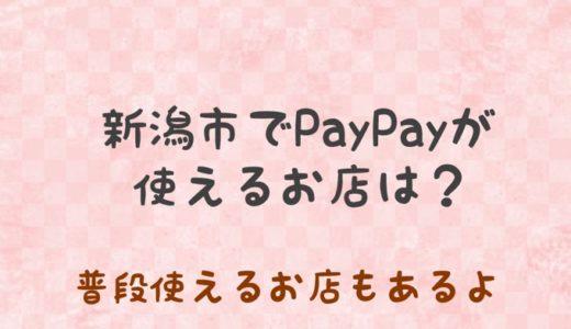 新潟市でPayPayが使えるお店は?【普段使い出来る店あります】