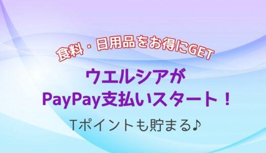 ついにウエルシアがPayPay支払い対応に!【新潟県に約60店舗】