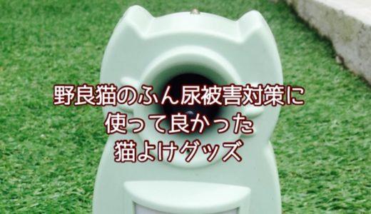 庭の野良猫!ふん尿被害対策に使って良かった猫よけグッズ