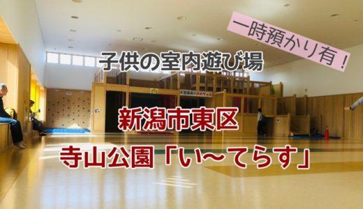 「いーてらす」口コミ 新潟市東区 大型遊具がある子供の室内遊び場【雨でも楽しい寺山公園】