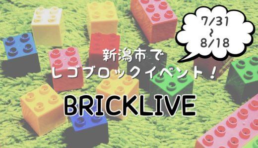 2019年 新潟市でレゴブロックのイベント「BRICKLIVE」感想 レゴの動物やレゴプールで遊べる!
